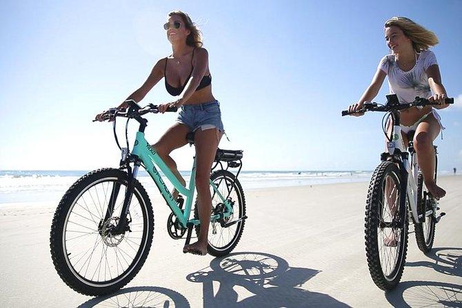 Full Day Electric Bike Rental