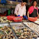 Guangzhou Old City Tour with special experience:shopping in Seafood market