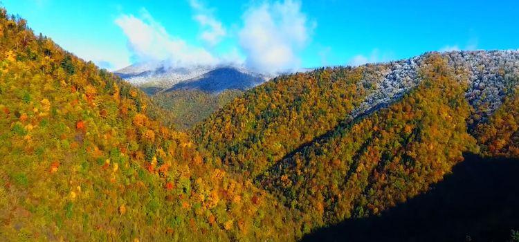 Phoenix Mountain National Forest Park3