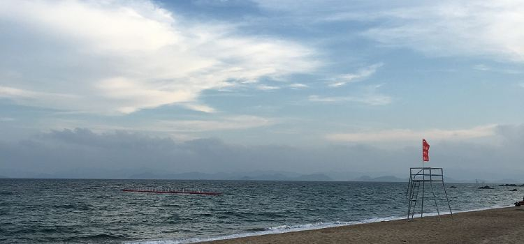 玫瑰海岸1