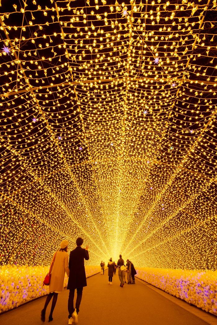 三井奧特萊斯購物城(爵士之夢長島店)一日遊(長島奧特萊斯購物中心&名花之里浪漫燈海)
