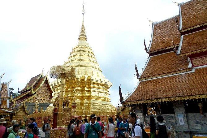 One Day Tour Doi Suthep Temple, Palad Temple, Orchid Farm, Longneck hill tribe village (Private tour)