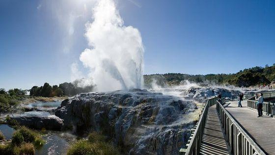 Best of Rotorua Tour