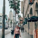 Private Half Day Hollywood Pop Culture History Walking Tour