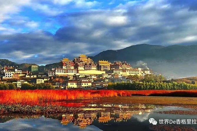 Shangri-la Tour Guide & Driver ( Tenzin)