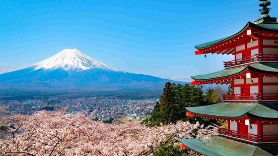 Mt Fuji Private customize tour with English speaking Driver