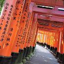 Kyoto Late Bird tour