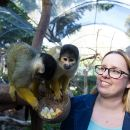 Adelaide Zoo Behind the Scenes Experience Ticket - Squirrel Monkey Encounter
