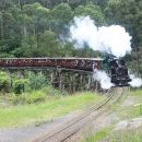 Puffing Billy (Dandenong Ranges & Brighton Bathing Boxes ) Experience