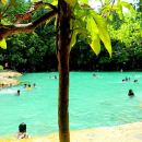 Half-Day Jungle Tour Including Crystal Pool and Krabi Hot Springs