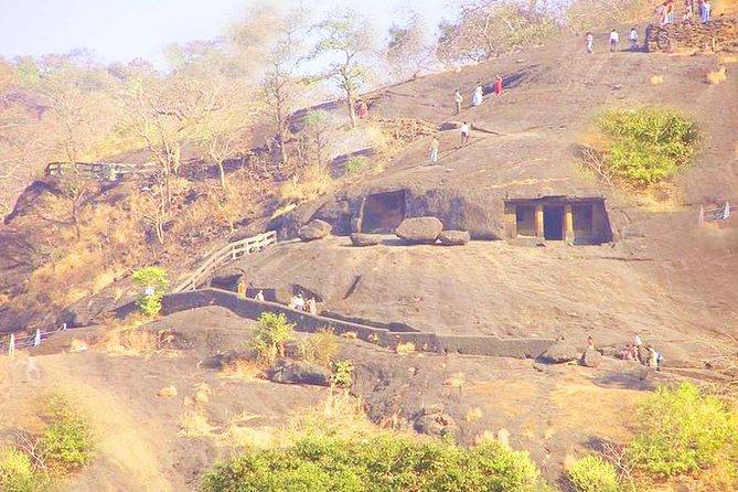 Mumbai Sanjay Gandhi National Park Kanheri Caves Private Trip with Lunch