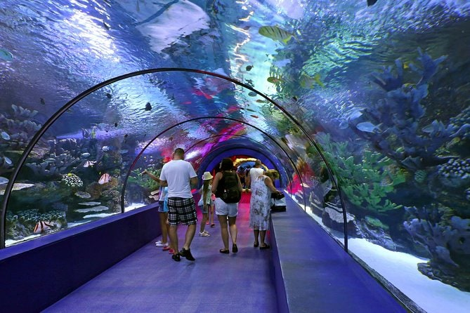 Antalya Aquarium admission with optional Antalya City Tour and Duden Waterfall