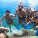 From Playa del Carmen: First Access to Xcaret with Express Transportation