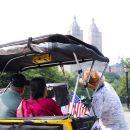 Highlights of Central Park Pedicab Tour
