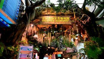 """【广州·天河】【雨林万圣节】早鸟特惠~~68元抢正佳雨林生态植物园万圣夜场票(18:00-21:30)全新体验雨林万圣夜狂欢派对,""""妖""""你来冒险,百鬼夜行,一起来捣蛋吧~~"""