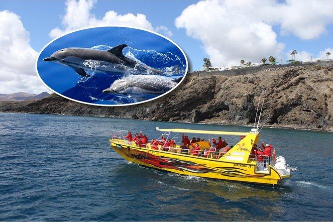 Lobos Island - The dolphin route