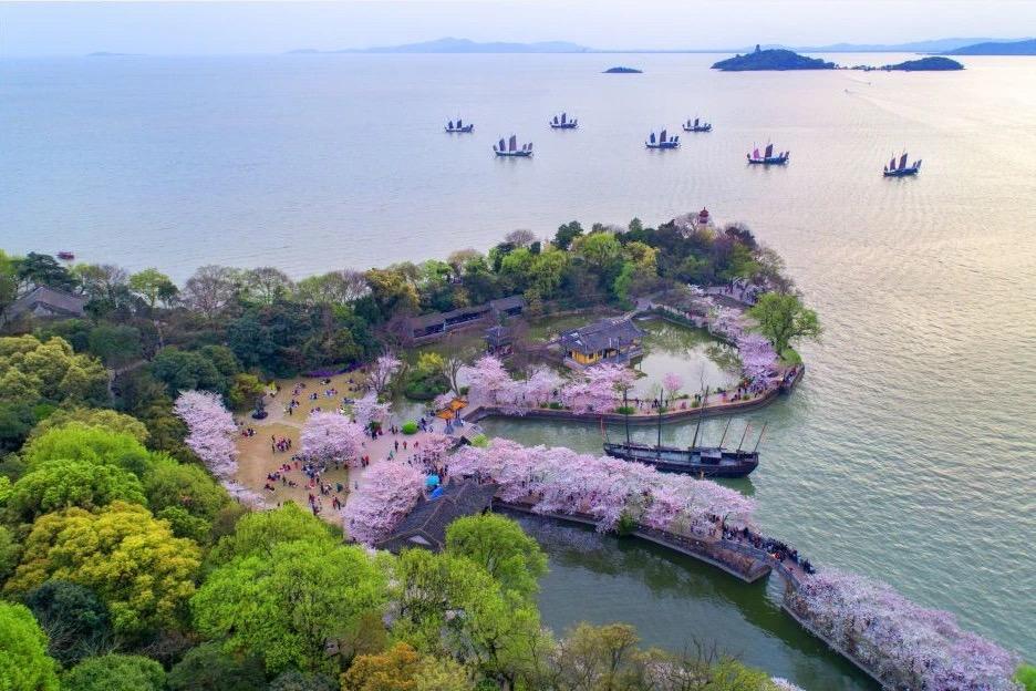 無錫靈山大佛+靈山梵宮+黿頭渚+太湖仙島一日遊(門票全包)
