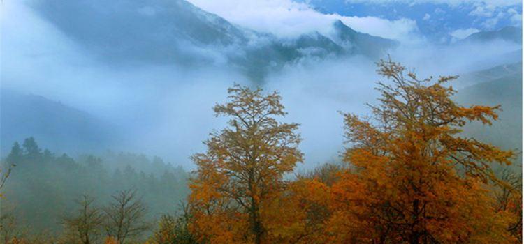 大熊山國家森林公園1