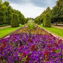 Private Tour: Regent's Park Photography Tour