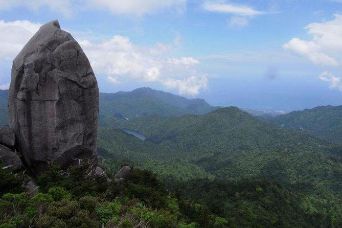Full Day Trekking Tour to the Granite Obelisk in Yakushima