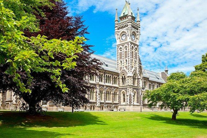 Dunedin City and Coastal Views 3-Hour Small-Group Guided Tour