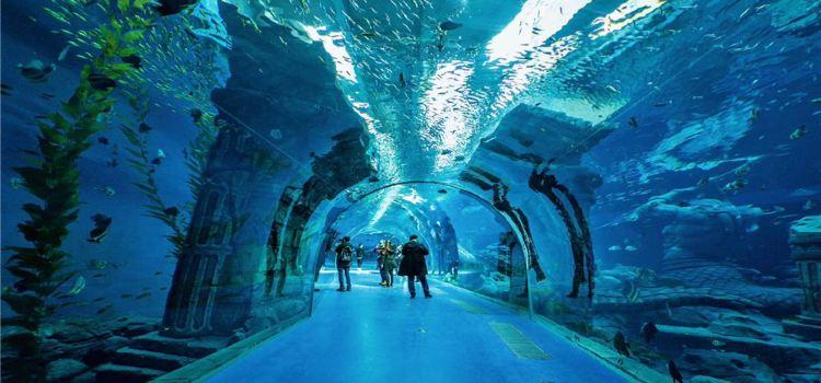 Poseidon Ocean Kingdom2