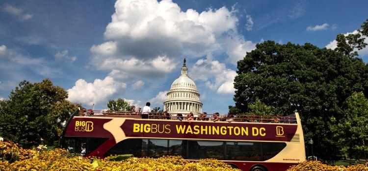 Big Bus Tours Washington DC2
