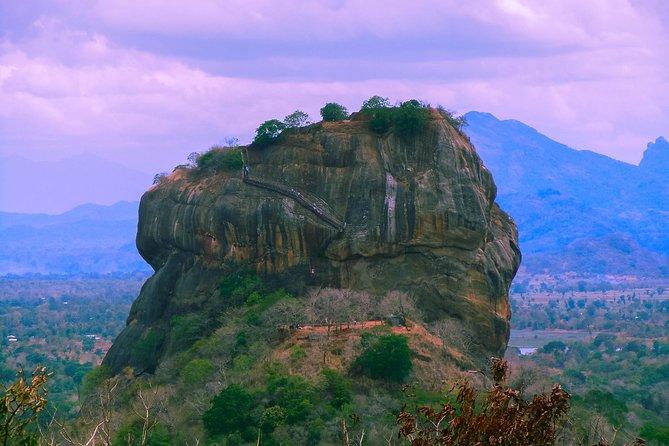 Sigiriya Rock and Dambulla Cave Temple Private Full-Day Tour