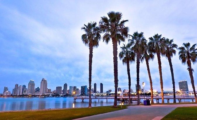 Private San Diego City and La Jolla Coast Tour