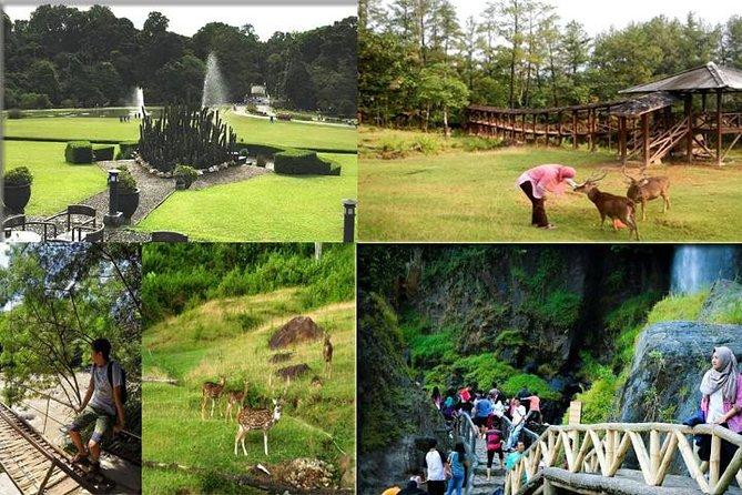 Bogor Amazing Tour