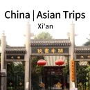 Xi'an City Walking Half Day Tour: Shuyuanmen Street, City Wall and Muslim Street (Rental Bikes and Dinner included)(XA-PW)