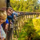 Puffing Billy Steam Train & Healesville Wildlife Sanctuary Tour From Melbourne
