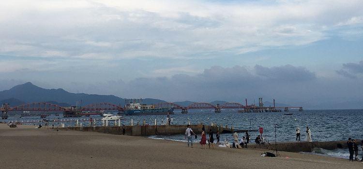 玫瑰海岸2