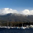 Hobart City and Mt Wellington Private Tour (Mercedes fleet/Professional Driver+Guide)