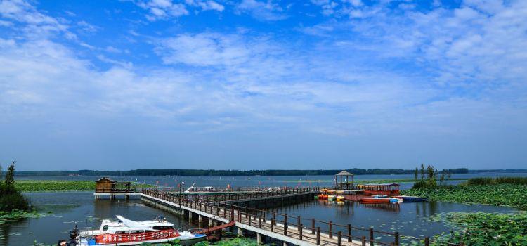 寶應湖國家濕地公園1
