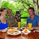 Breakfast with the Koalas at Hartley's Crocodile Park from Cairns or Palm Cove
