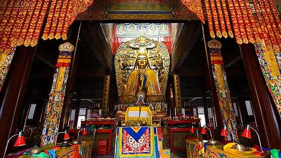 Half Day Tour To Lama Temple and Confucius Temple in Beijing