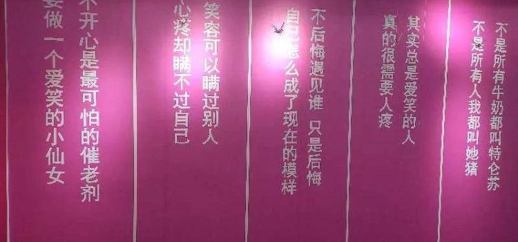 南昌失戀博物館2
