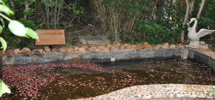 Hongyuan Ecological Hot Spring2