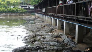 曼谷三攀象园
