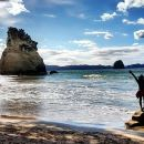 Coromandel Day Trip (Cathedral Cove and Hot Water Beach)