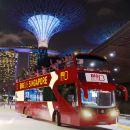 Singapore Night City Tour