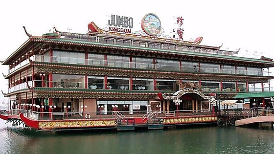 City Sightseeing plus Jumbo Kingdom Lunch with Pickup from Hong Kong Island