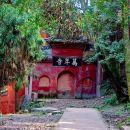 2-Day Panda Base plus Leshan Giant Buddha and Emei Mountain Tour
