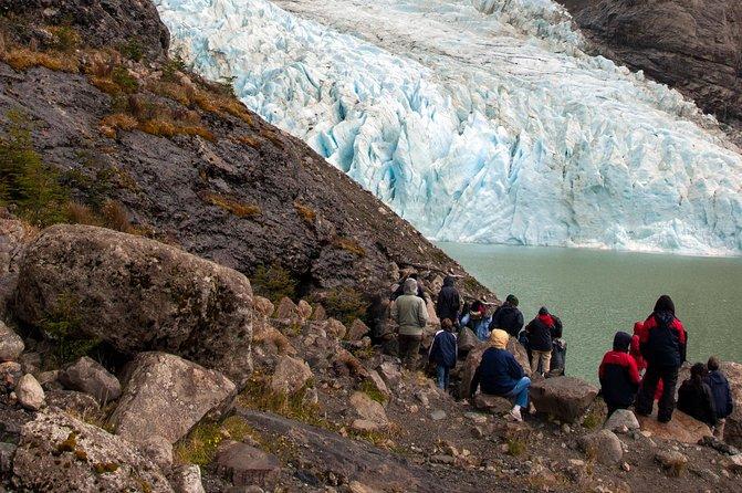 Balmaceda and Serrano Glaciers Sightseeing Cruise from Puerto Natales