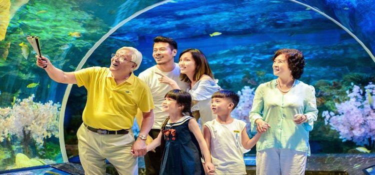 Chengdu Haichang Polar Ocean Park2