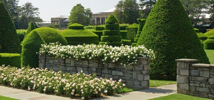 Longwood Gardens3