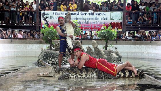 曼谷三攀象乐园門票