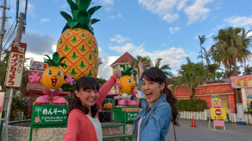 Okinawa Churaumi Aquarium + Kori-jima Island +  American Village Day Trip [HipHopBus B]