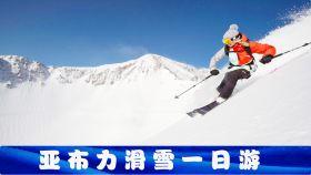 亚布力滑雪旅游度假区+马拉爬犁+世界第一滑道一日游【纯滑雪,周一特价,可选升级包,无悔出行】